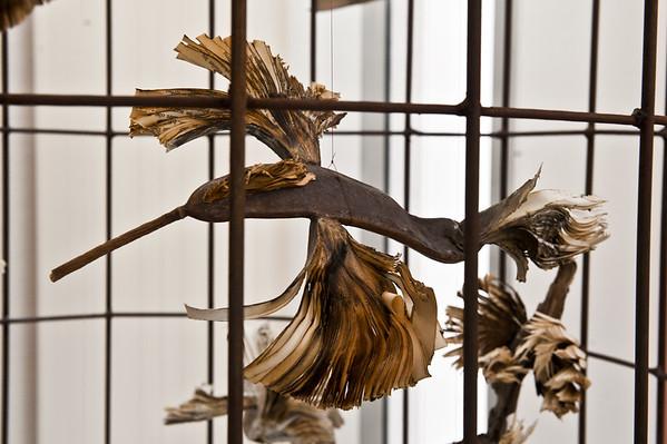 Les oiseaux-livres