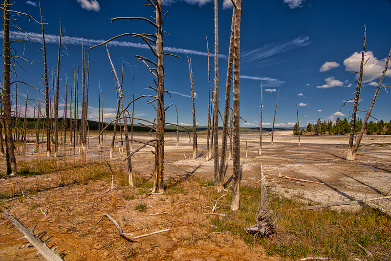 Yellowstone Day 5 R--19.jpg