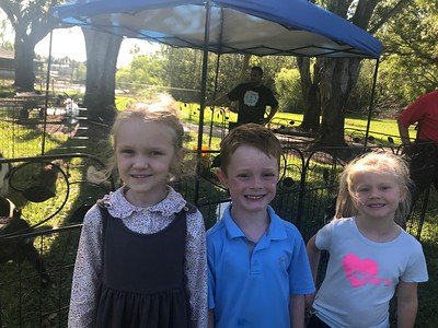 04-06-2018: PreK-K Petting Zoo