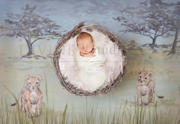 Ottaway newborn