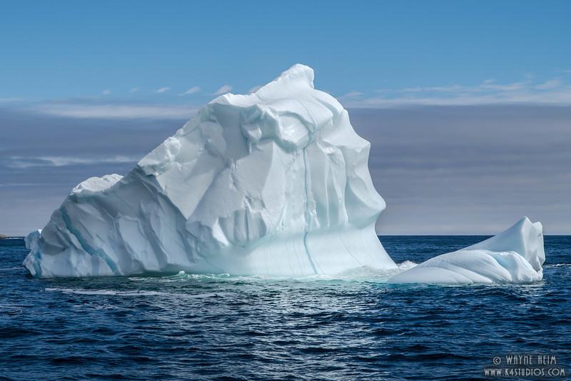 Iceberg Face     Photography by Wayne Heim