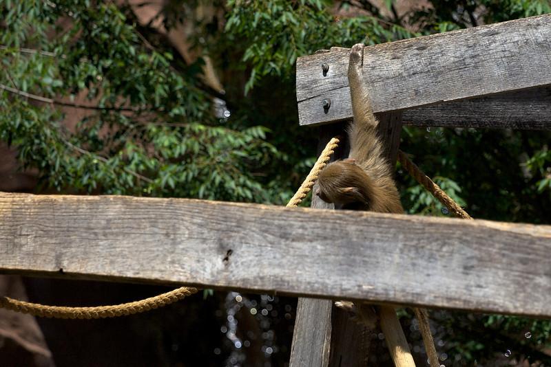 Zoo_Trip_23.jpg