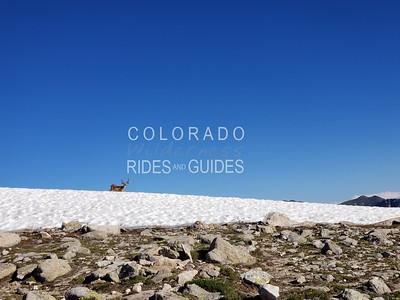 2019 07 15 LaBerge summit series Hallet Peak