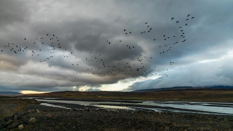 Iceland19_-3162.jpg