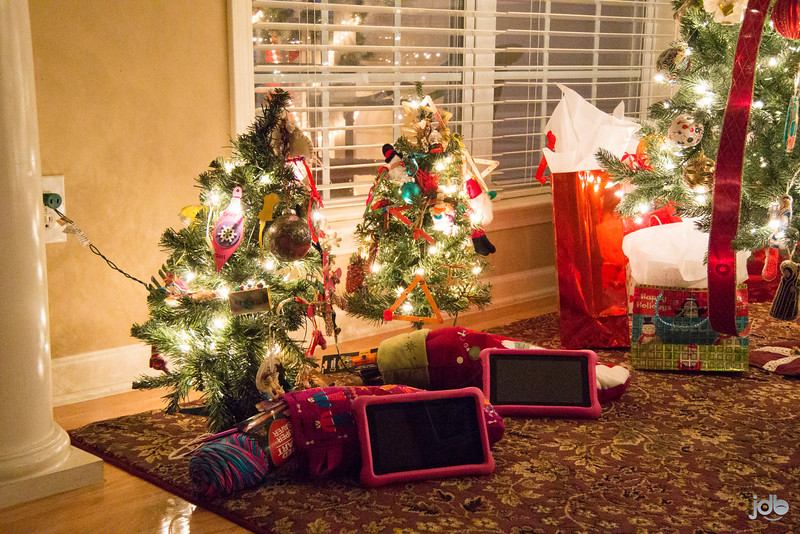 Harrell Christmas '15 (3 of 18).jpg