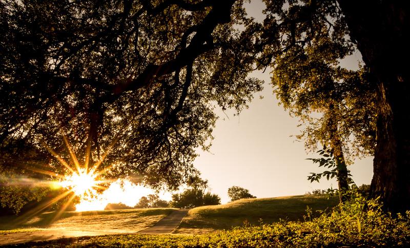 13. Sunrise