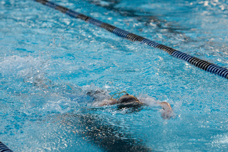lcs_swimming_kevkramerphoto-734.jpg