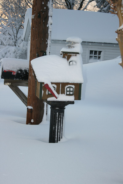 snow 2010 feb IMG_2387 (25).JPG