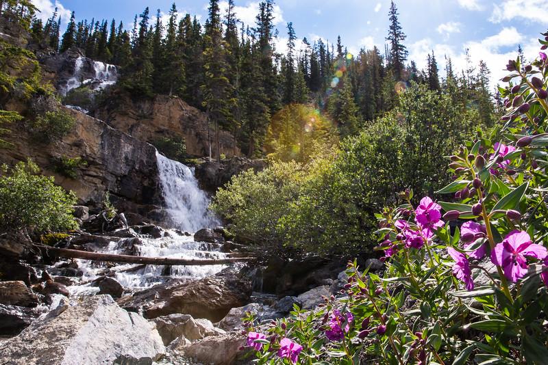 Banff 2016-5414.jpg