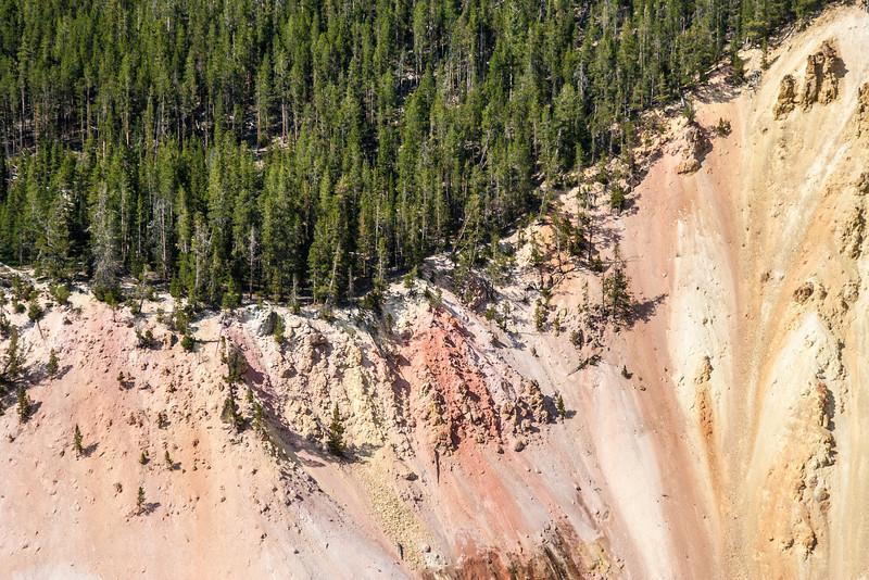 Yellowstone-9015.jpg