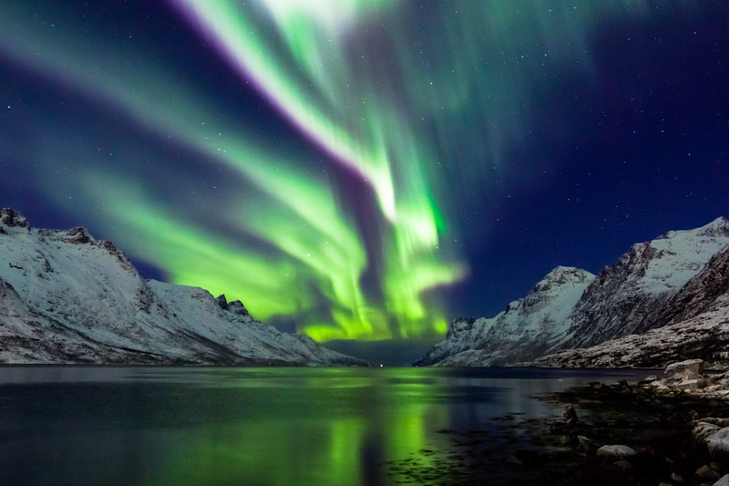 Aurora at Ersfjordbotn