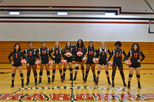 2015-16 Women's Volleyball