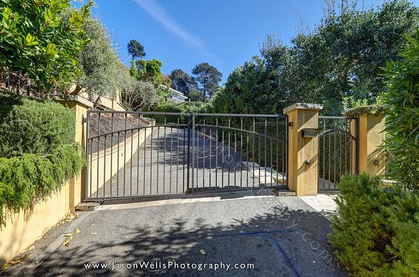 Eucalyptus, Belvedere 2020