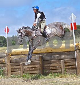 Horses - All horse sports