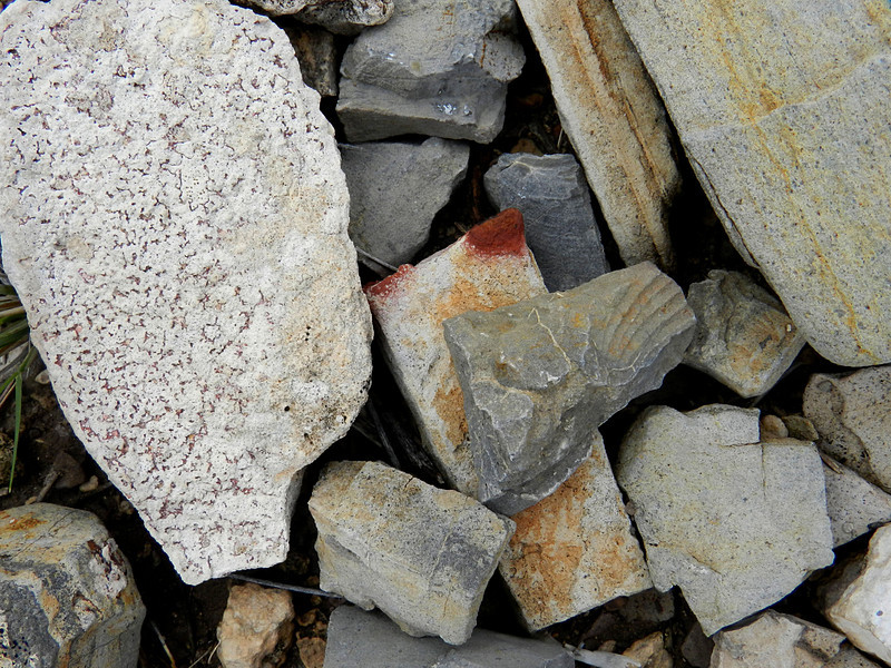 terlingua ranch 139 rocks and fossil.jpg