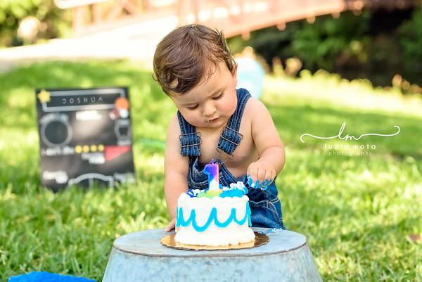 JOSHUA'S CAKE SMASH - FB