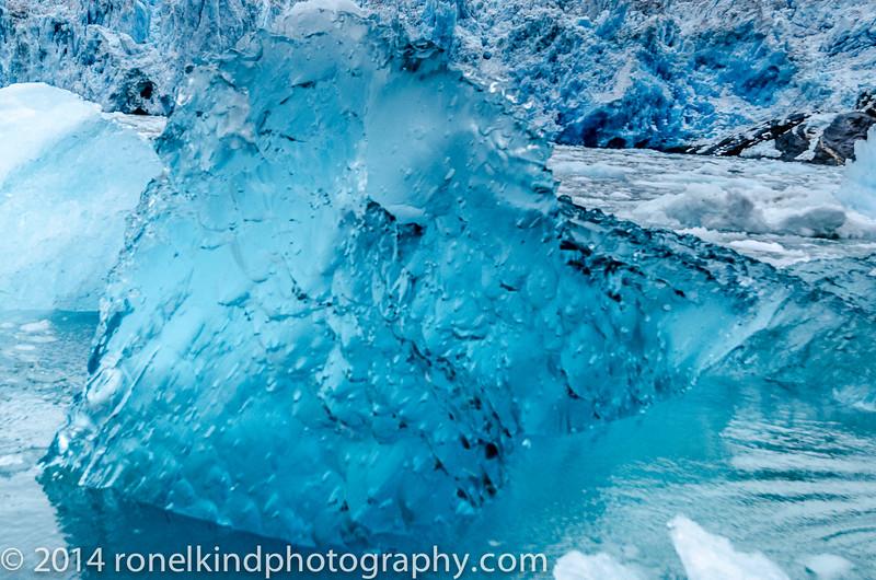 Glaciers-0151.jpg