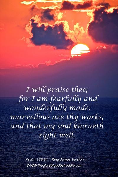Psalm 139-14  .jpg