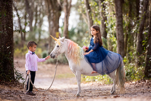 Unicorns Jan 2021 - Rodriguez
