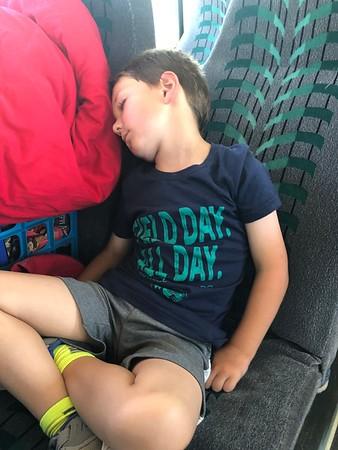 Pre-K, Kinder & 1st Grade Zoo Trip