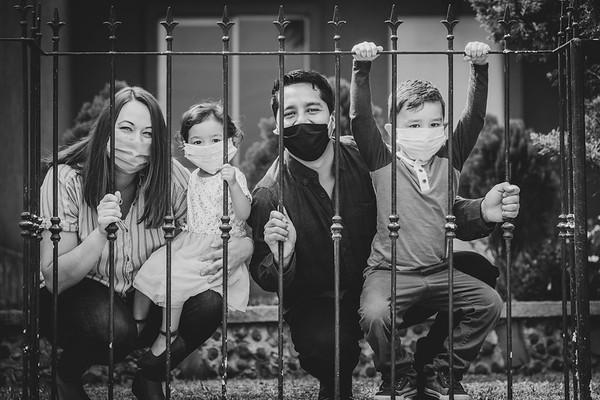 Familias en Covid-2019