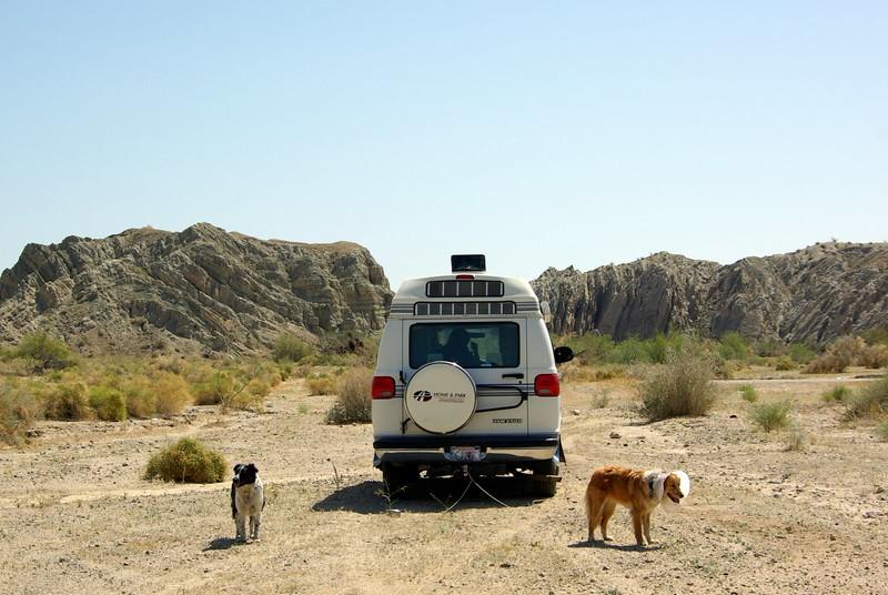 Colorado Desert wayside, near Salton Sea, with Sugar & Freckles