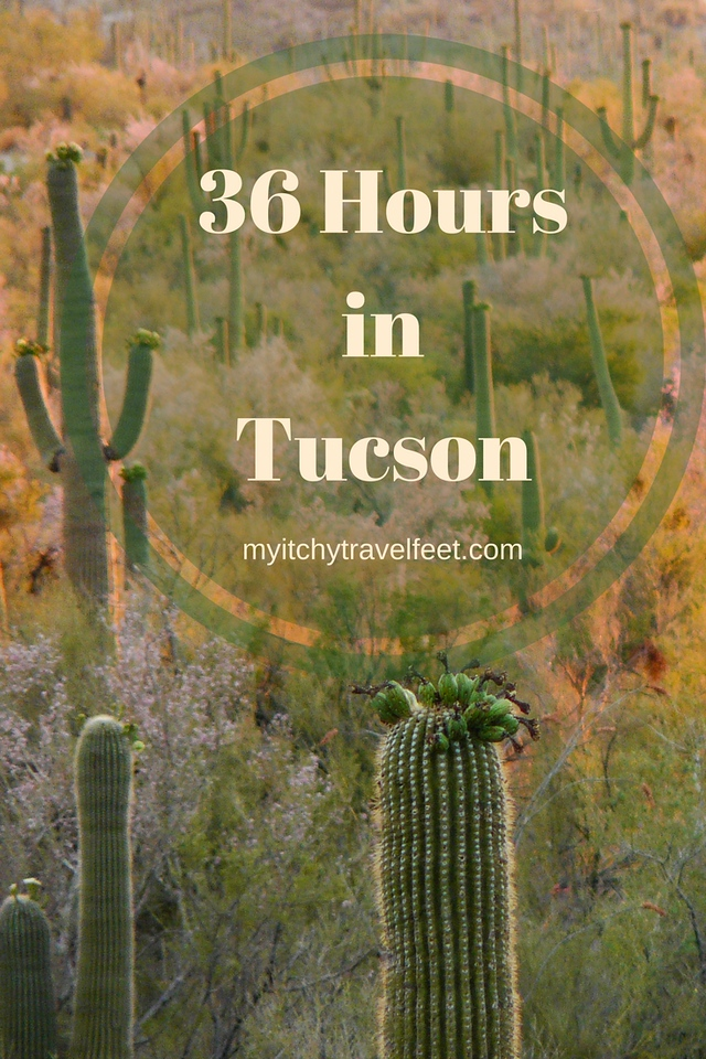 If you only have 36 hours in Tucson, use this hour by hour itinerary for fun in the Arizona desert. #tucson #travel