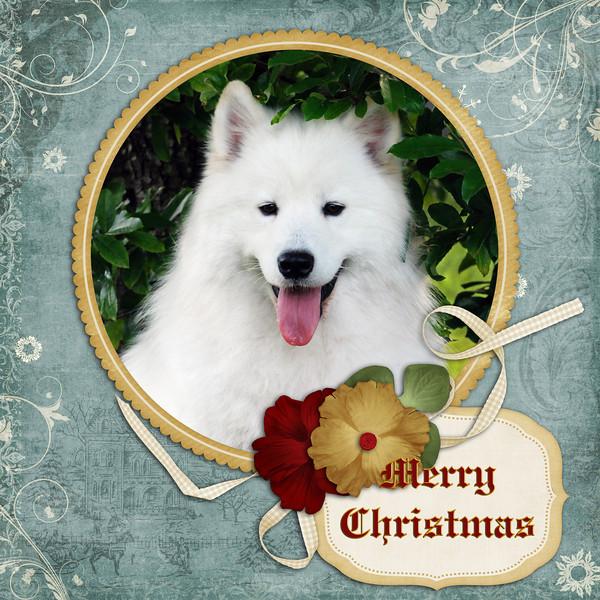 Duncan-Christmas-2010.jpg