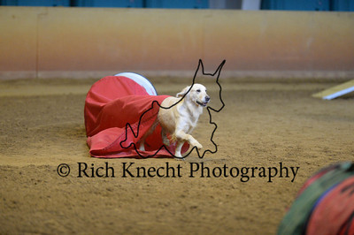 """Saturday Excellent Standard 16"""" Group 2"""