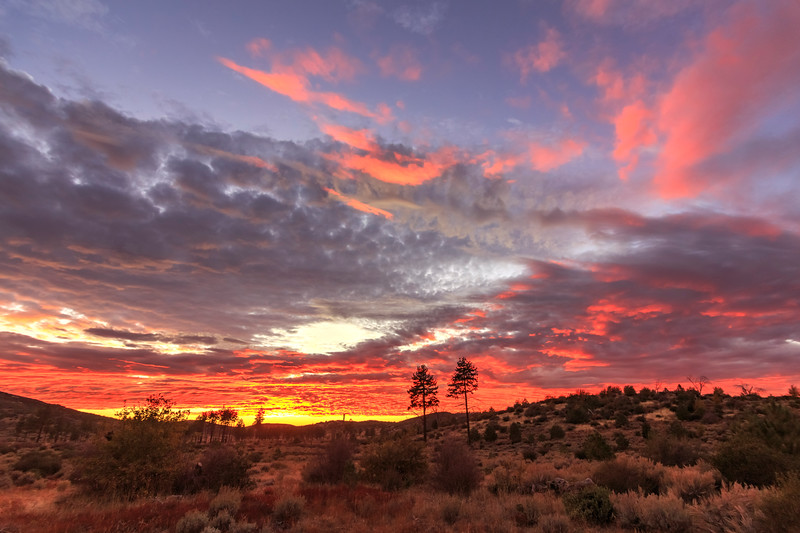 Epic Sunset Over a Meadow at Mount Laguna