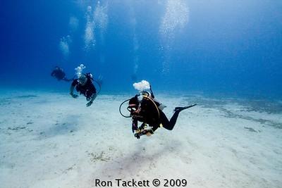 Scuba Diving - trips