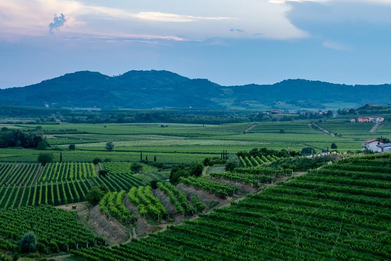 Goriska Brda - Slovenia's wine region