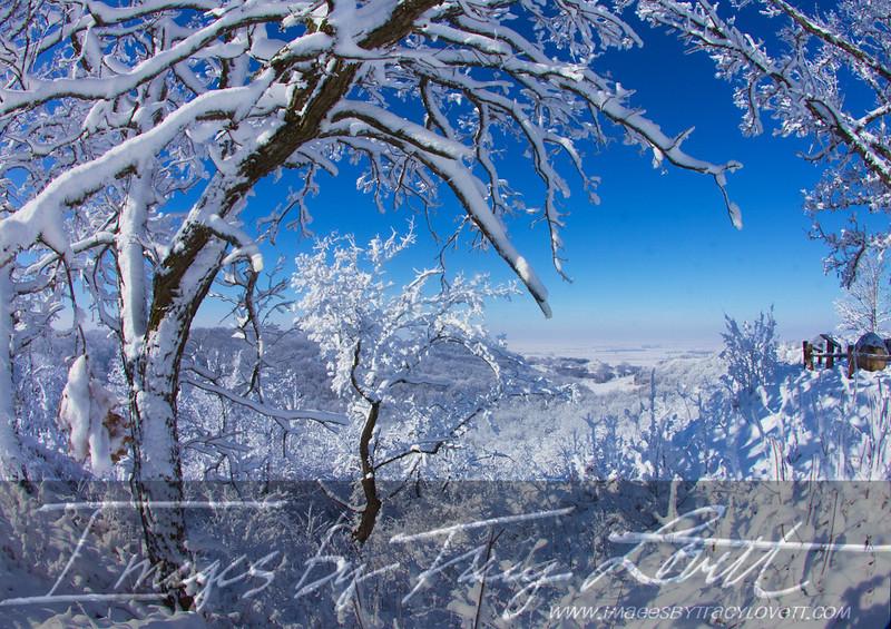 snow_3346 copy.jpg