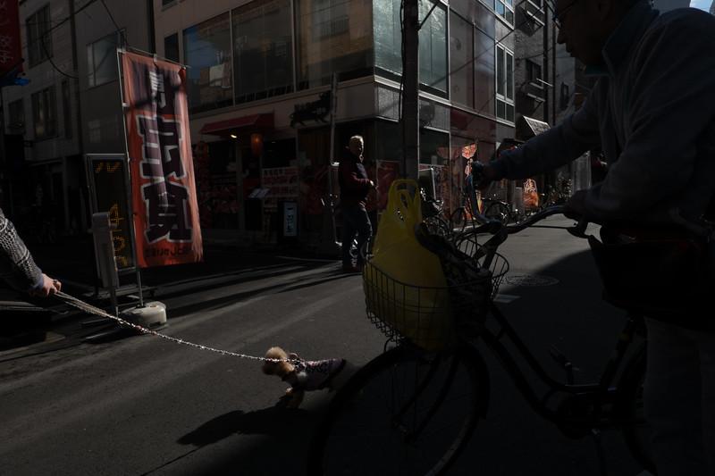 2019-12-21 Japan-444.jpg