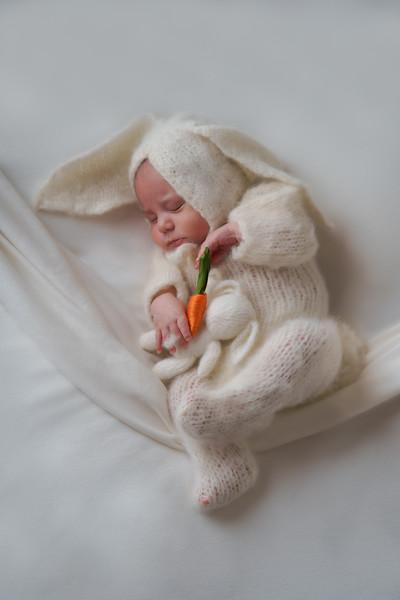Brody's Newborn Photos - March 2021