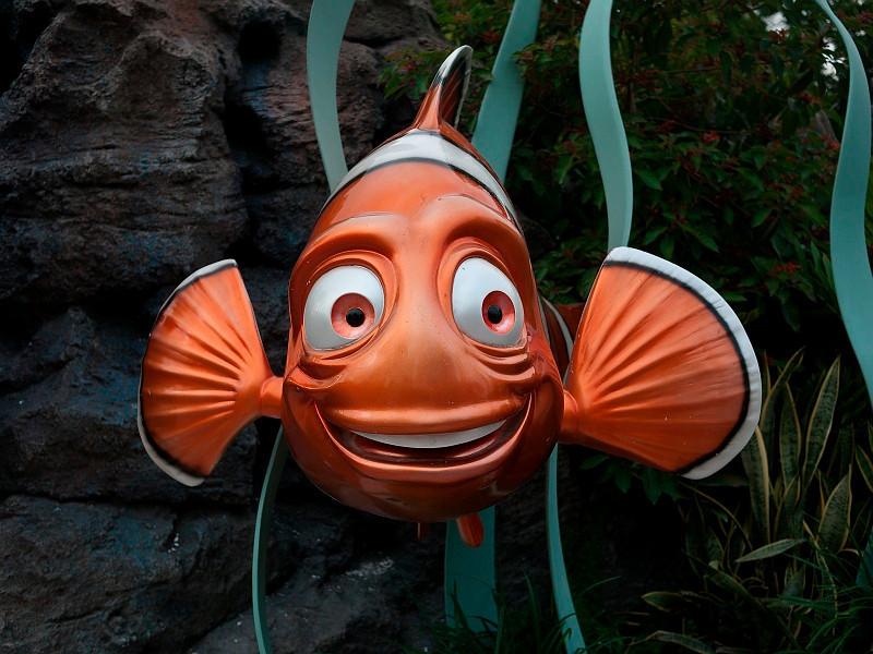 Outside Finding Nemo.
