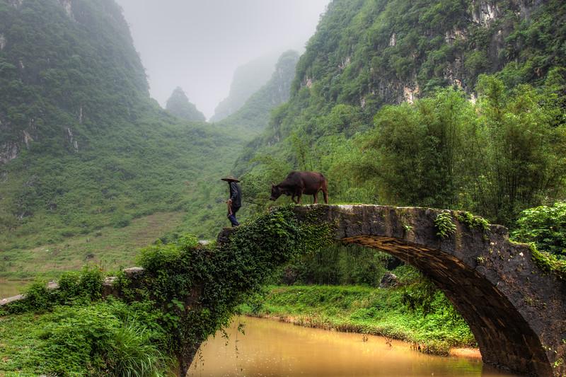 2012 china fisherman & old man w- cow-10.jpg