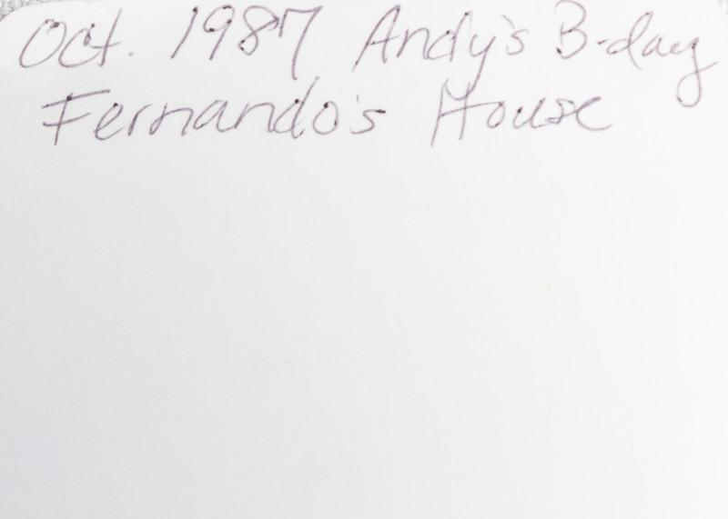 Andy's Birthday (1987)