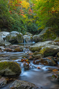 The Art of Nature Photography - Fall in the Smokies 2020