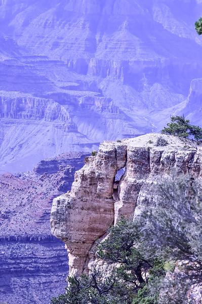 2019 Grand Canyon-272.jpg