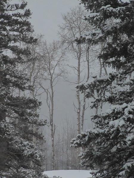 2010-12-29 18-52-46 - IMG_1436.JPG