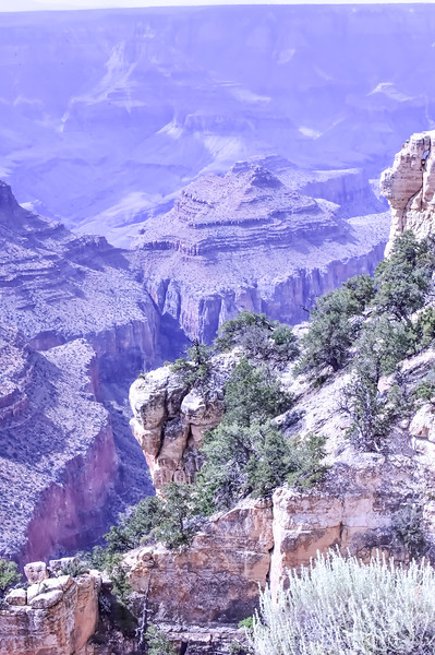 2019 Grand Canyon-278.jpg