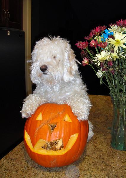 2009.10.31 - Halloween