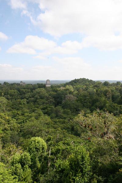 Guatemala Tikal 0 192.JPG