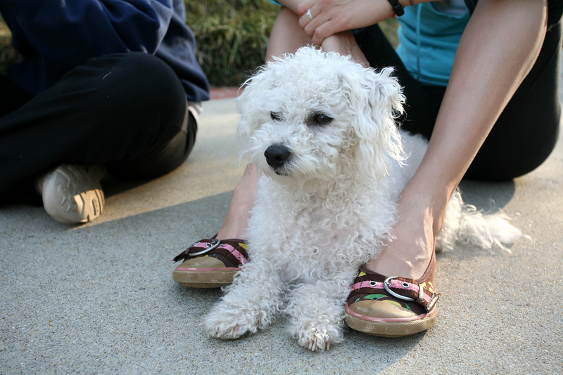 Max at Jamies feet.jpg