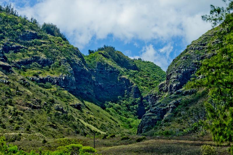 Journey into Oahu Photograph 112