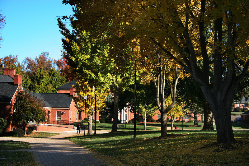 Gardner-Webb University student walking across the quad on a Fall day.