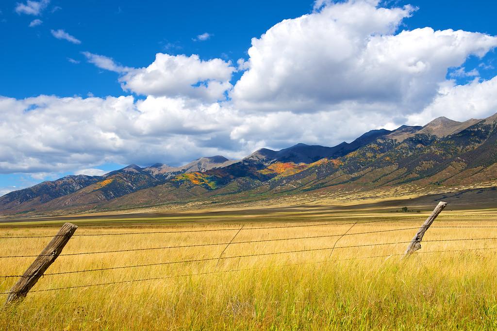 Colorado Aspens 14 - Version 2