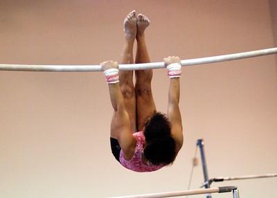Hamline Gymnastics