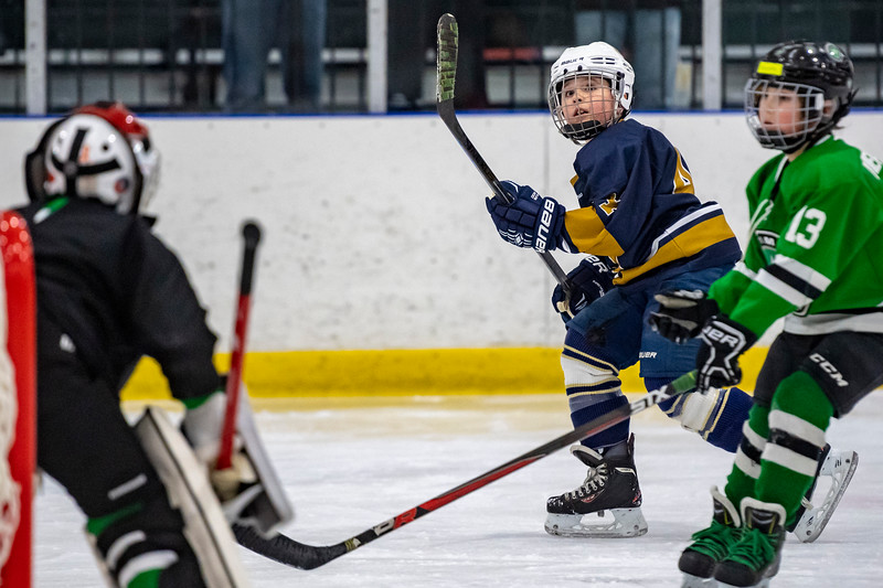 2019-02-03-Ryan-Naughton-Hockey-12.jpg